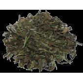 Белый чай с ростками бамбука